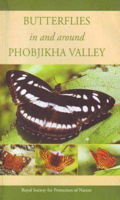 Butterflies In and Around Phobjikha Valley