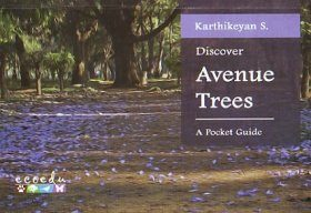 Discover Avenue Trees [of Bangalore]