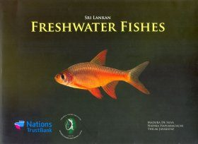 Sri Lankan Freshwater Fishes