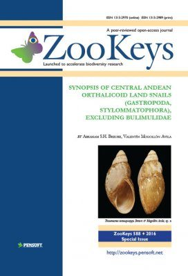 ZooKeys 588: Synopsis of Central Andean Orthalicoid Land Snails (Gastropoda, Stylommatophora), Excluding Bulimulidae