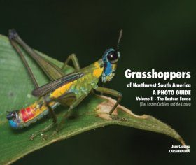 Grasshoppers of Northwest South America - A Photo Guide, Volume 2: The Eastern Fauna (The Eastern Cordillera and the Llanos)