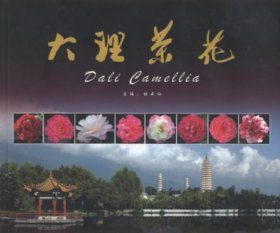 Dali Camellia [English / Chinese]