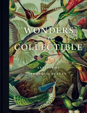 Wonders are Collectible – Taxidermy