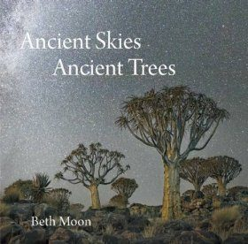 Ancient Skies, Ancient Trees