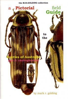 A Pictorial Field Guide to the Beetles of Australia: Part 3, Chalcophorinae
