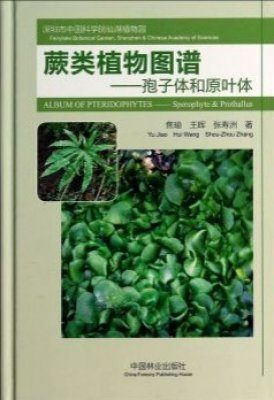 Album of Pteridophytes: Sporophyte & Prothallus [English / Chinese]