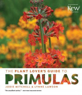 The Plant Lover's Guide to Primulas
