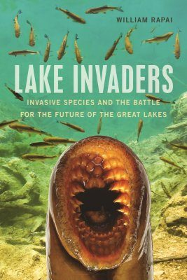 Lake Invaders
