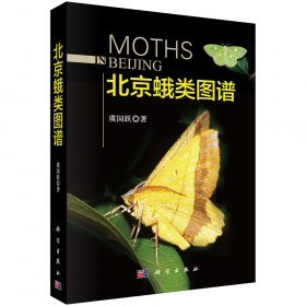 Moths in Beijing [Chinese]