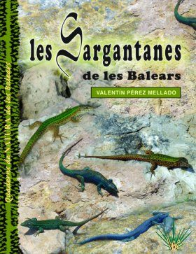 Les Sargantanes de les Balears [Lizards of the Balearics]