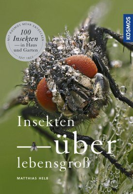 Insekten Überlebensgroß [Insects Larger Than Life]