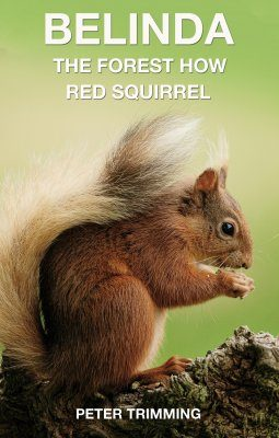 Belinda: The Forest How Red Squirrel