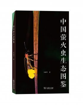 Ecological Atlas of Chinese Fireflies [Chinese]
