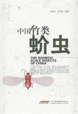 The Bamboo Scale Insects of China [Chinese]