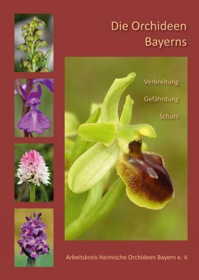 Die Orchideen Bayerns: Verbreitung, Gefährdung, Schutz [The Orchids of Bavaria: Distribution, Threats, Protection]