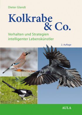Kolkrabe & Co.: Verhalten und Strategien Intelligenter Lebenskünstler [The Raven & Co.: Raven & Co. Behaviour and Strategies of Intelligent Life Artist]