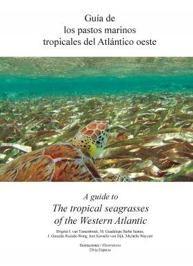 A Guide to the Tropical Seagrasses of the Western Atlantic / Guía de los Pastos Marinos Tropicales del Atlántico Oeste