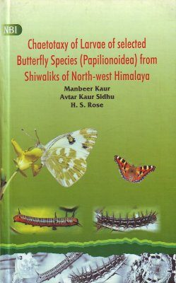 Chaetotaxy of Larvae of Selected Butterfly Species (Papilionoidea) from Shiwaliks of North-West Himalaya