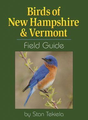 Birds of New Hampshire & Vermont Field Guide