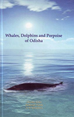 Whales, Dolphins and Porpoise of Odisha