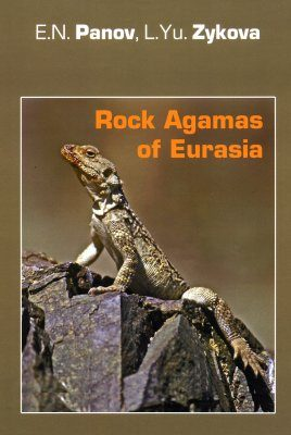 Rock Agamas of Eurasia