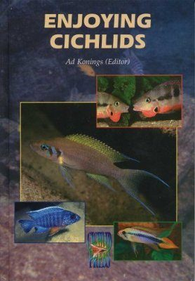 Enjoying Cichlids