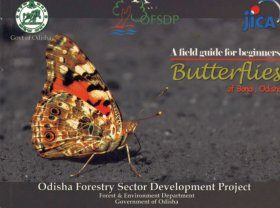 Butterflies of Bonai, Odisha