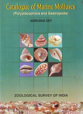 Catalogue of Marine Molluscs: Polyplacophora and Gastropoda