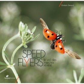 Speed Flyers: Le Vol des Insectes Révélé [The Flight of Insects Revealed]