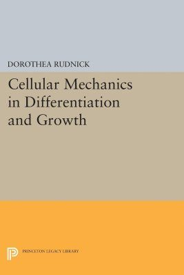 Cellular Mechanics in Differentiation and Growth