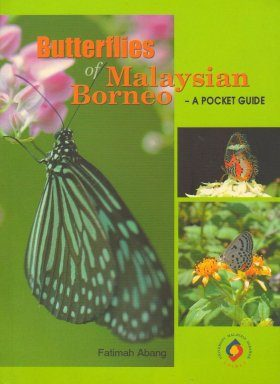 Butterflies of Malaysian Borneo