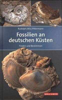 Fossilien an Deutschen Küsten: Finden und Bestimmen [Fossils of Germany's Coasts: Finding and Identifying]