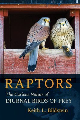Raptors: The Curious Nature of Diurnal Birds of Prey