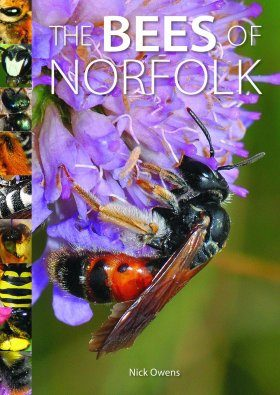 The Bees of Norfolk