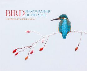 Bird Photographer of the Year 2017