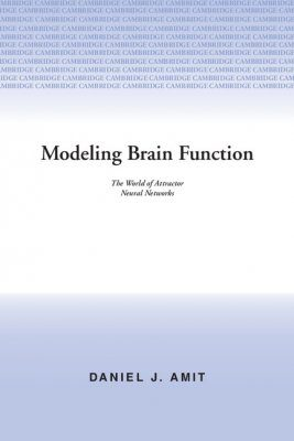 Modelling Brain Function