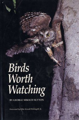 Birds Worth Watching