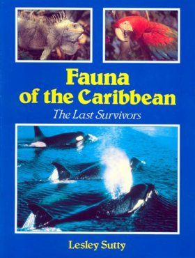 Fauna of the Caribbean