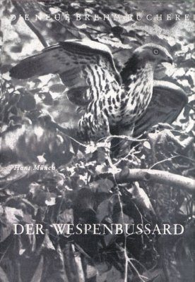 Der Wespenbussard [The Honey Buzzard]