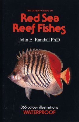 The Diver's Guide to Red Sea Reef Fishes