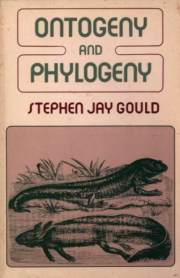 Ontogeny and Phylogeny