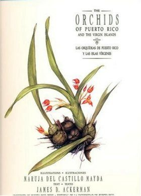 The Orchids of Puerto Rico and the Virgin Islands / Las Orquídeas de Puerto Rico y las Islas Vírgenes
