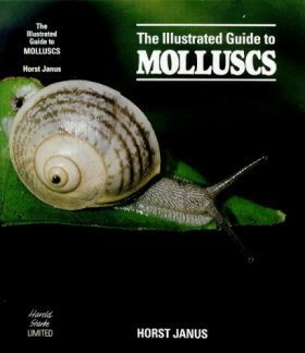 the Illustrated Guide to Molluscs