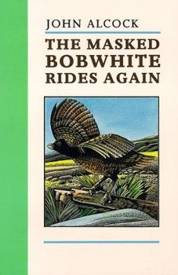 The Masked Bobwhite Rides Again