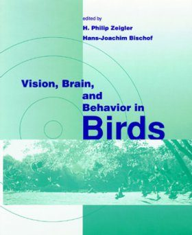 Vision, Brain, and Behaviour in Birds