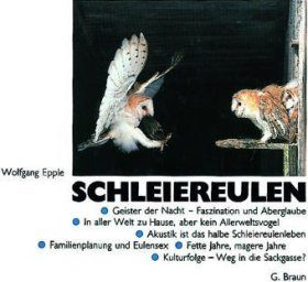 Schleiereulen [The Barn Owl]
