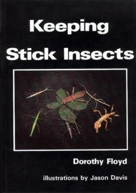 Keeping Stick Insects