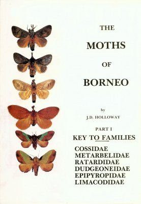 The Moths of Borneo, Part 1