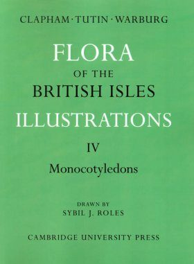Flora of the British Isles Illustrations 4