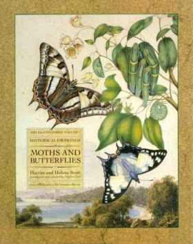 Historical Drawings of Moths and Butterflies